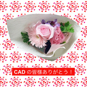 Cad_2