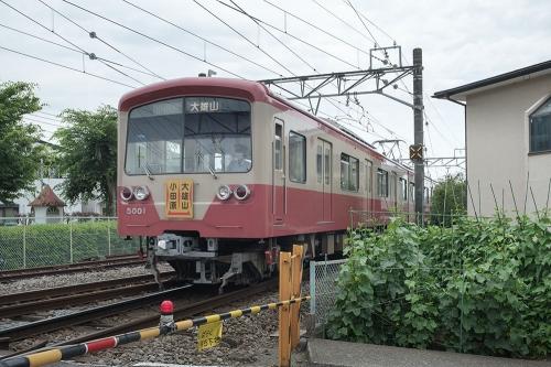 Dscf5920